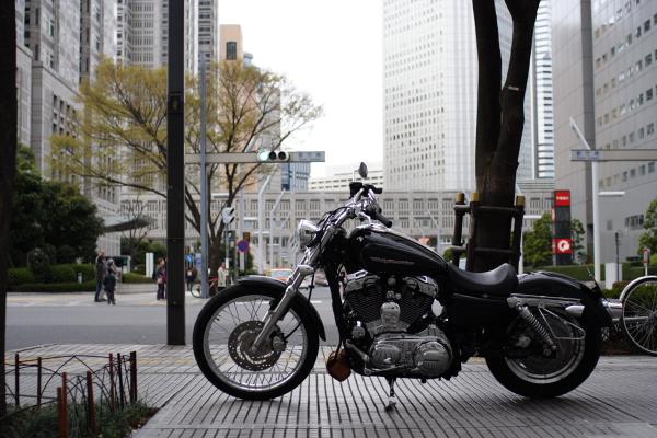20080326_2.JPG